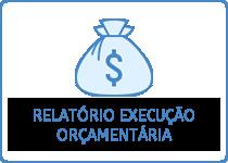 Relatório de Execução Orçamentária